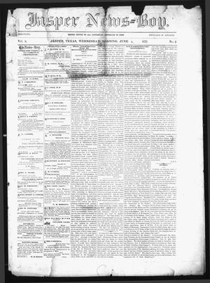 Primary view of object titled 'The Jasper News-Boy (Jasper, Tex.), Vol. 8, No. 5, Ed. 1 Wednesday, June 4, 1873'.