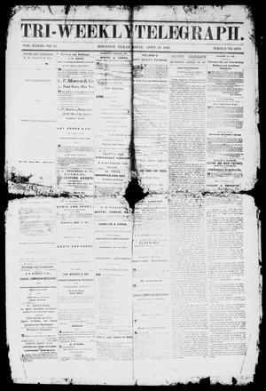 Primary view of object titled 'Tri-Weekly Telegraph (Houston, Tex.), Vol. 33, No. 14, Ed. 1 Friday, April 19, 1867'.