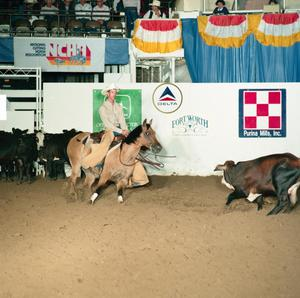 Primary view of object titled '[Cutting Horse Competition: Trips Double Bueno #6]'.
