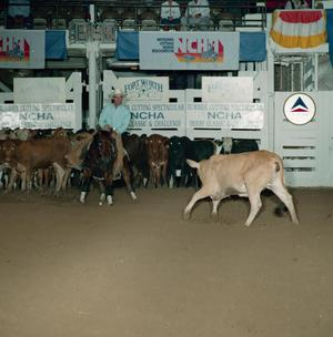 Primary view of object titled 'Cutting Horse Competition: Image 1991_D-144_03'.