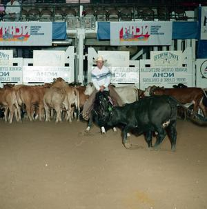 Primary view of object titled 'Cutting Horse Competition: Image 1991_D-145_12'.