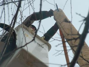 Primary view of object titled '[Altec employee working on utility line]'.