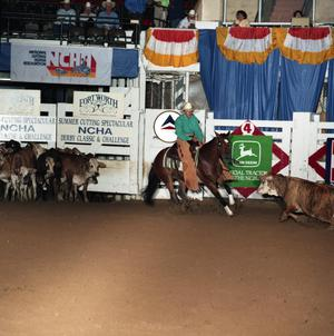 Primary view of Cutting Horse Competition: Image 1991_D-217_10