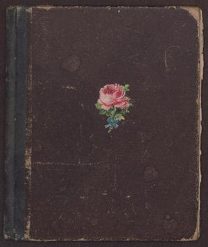 Primary view of object titled '[Journal of Gertrude Osterhout at Baylor Female College, 1880-1883]'.