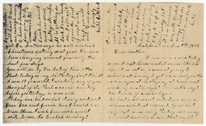 Primary view of object titled '[Letter from Gertrude Osterhout to Junia Roberts Osterhout, January 7, 1881]'.