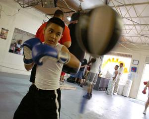 Primary view of object titled '[Boy hitting speed bag with blue boxing gloves]'.