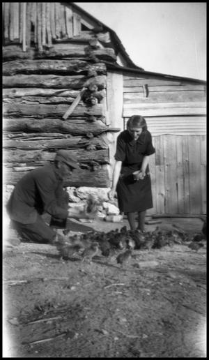 Primary view of object titled '[Photograph of a Woman and Man Feeding Chicks]'.