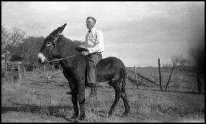 Primary view of object titled '[Photograph of a Man on a Mule]'.