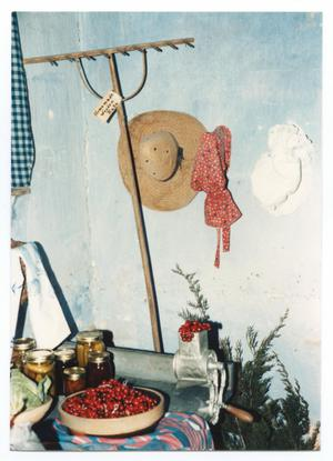 Primary view of object titled '[Photograph of the Kammlah House Decorated for Christmas]'.