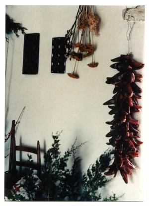 Primary view of object titled '[Photograph of the Kammlah House at Christmas]'.