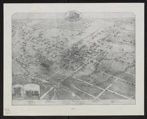Primary view of object titled 'Bird's eye view of Denton, Denton County, Texas: 1883'.