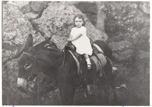 Primary view of object titled '[A Mayor's Granddaughter on a Donkey]'.