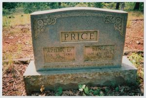 Primary view of object titled '[Headstone of Azilea and Ben Price]'.