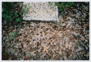 Primary view of object titled '[Headstone of Lela M. Price]'.