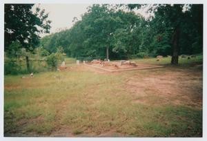 Primary view of object titled '[Price Cemetery]'.