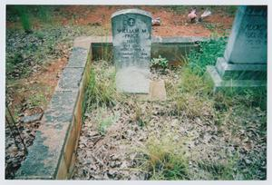 Primary view of object titled '[Headstone of William M. Price]'.