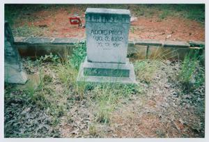Primary view of object titled '[Headstone of Addie Price]'.