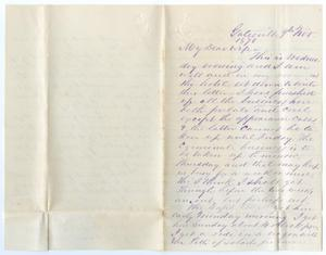 Primary view of object titled '[Letter from John Patterson Osterhout to Junia Roberts Osterhout, November 9, 1870]'.