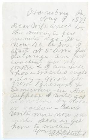 Primary view of object titled '[Letter from John Patterson Osterhout to Junia Roberts Osterhout, August 9, 1873]'.
