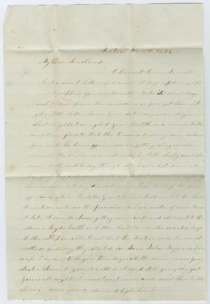 Primary view of object titled '[Letter from Junia Roberts Osterhout to John Patterson Osterhout, November 4, 1874]'.