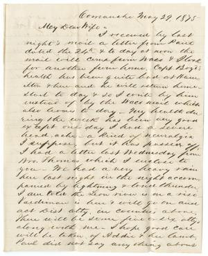 Primary view of object titled '[Letter from John Patterson Osterhout to Junia Roberts Osterhout, May 29, 1875]'.