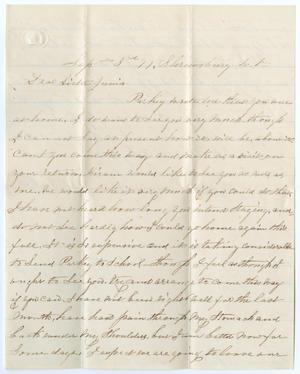 Primary view of object titled '[Letter from E. Kirlin to Junia Roberts Osterhout, September 3, 1877]'.