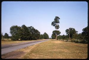 Primary view of object titled '[Highway in Anderson County]'.