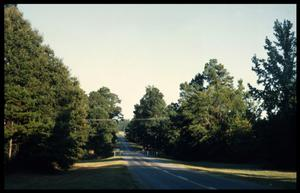Primary view of object titled '[An Unidentified Anderson County Farm Road]'.