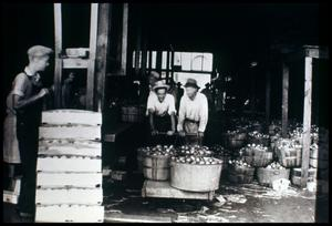 Primary view of object titled '[Unidentified Men with Apples]'.