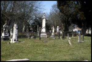 Primary view of object titled '[Photograph of Oldest Section of the Palestine City Cemetery Complex]'.