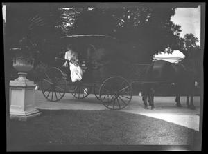 Primary view of object titled '[Unidentified People in a Carriage]'.