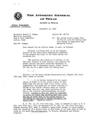 Primary view of object titled 'Texas Attorney General Opinion: WW-710'.