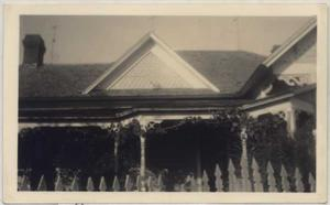 Primary view of object titled '[Grapevine on House]'.