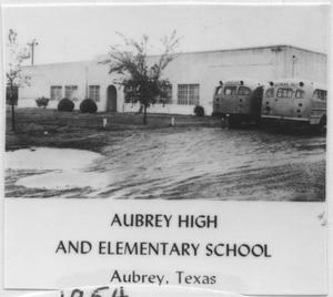 Primary view of object titled '[Aubrey High and Elementary Schools]'.