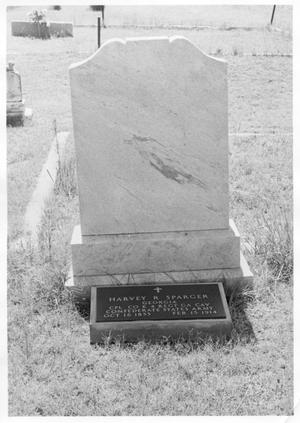 Primary view of object titled 'Grave of Harvey Sparger'.