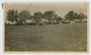 Primary view of object titled '[Butler Ranch Headquarters]'.