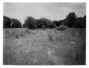 Primary view of object titled 'Unmarked Graves at Riley Cemetery'.