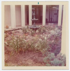 Primary view of object titled '[Helen Hall Library Courtyard]'.