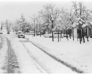 Primary view of object titled '[Snow Scene in Stonegate Addition in Bedford]'.