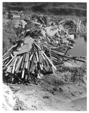Primary view of object titled 'Trash Piled in the Trinity River'.