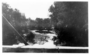Primary view of object titled '[Photograph of Trinity River West of Precinct Line Road]'.