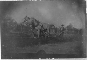 Primary view of object titled 'T.J. Dickie at the Plow'.