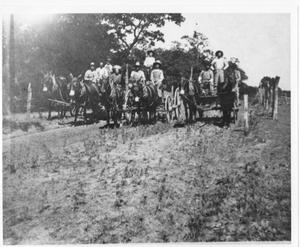 Primary view of object titled 'Farmers in Bransford with Their Mule Team'.
