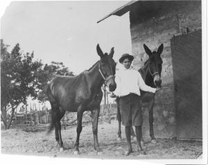 Primary view of object titled 'Louis Bideault Standing with Mules'.