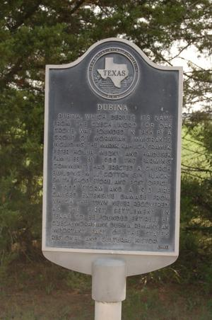 Primary view of object titled 'Historic Plaque, Dubina'.