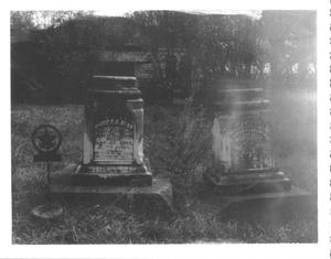 Primary view of object titled '[Grave Markers of Judge CC and Sarah Stafford Dyer]'.