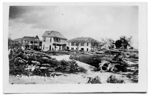 Primary view of object titled '[Chaparral Street with trees down]'.