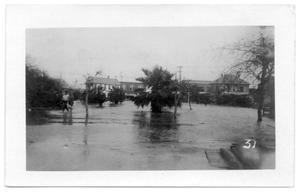 Primary view of object titled '[The park under water]'.