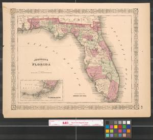 Primary view of object titled 'Johnson's Florida.'.
