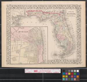 Primary view of County map of Florida.